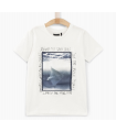 T-shirt Imprimé Raie